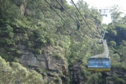 Cableway, Scenic World