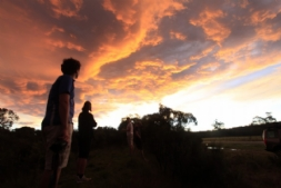Sunset clouds, Megalong Valley
