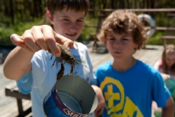 Kids catching yabbies