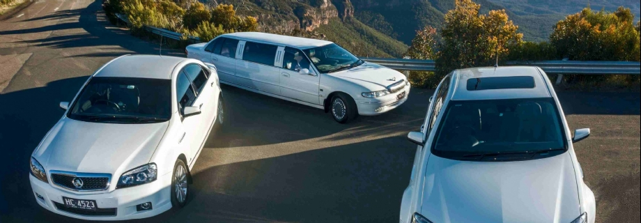 Mountain Top Limousines