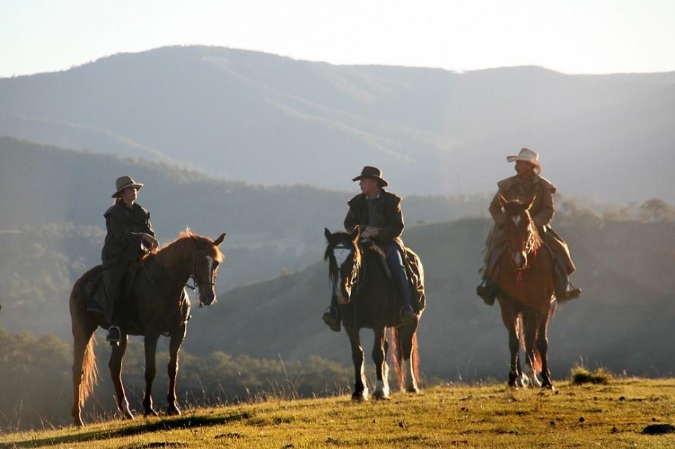 Blue Mountains Horse Riding Blue Mountains Australia