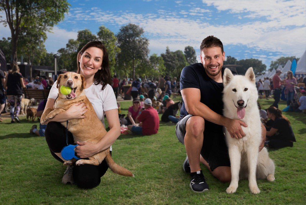 Image Result For Million Paws Walk
