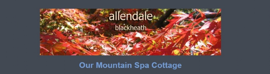 Mountain Spa Cottage at Allendale