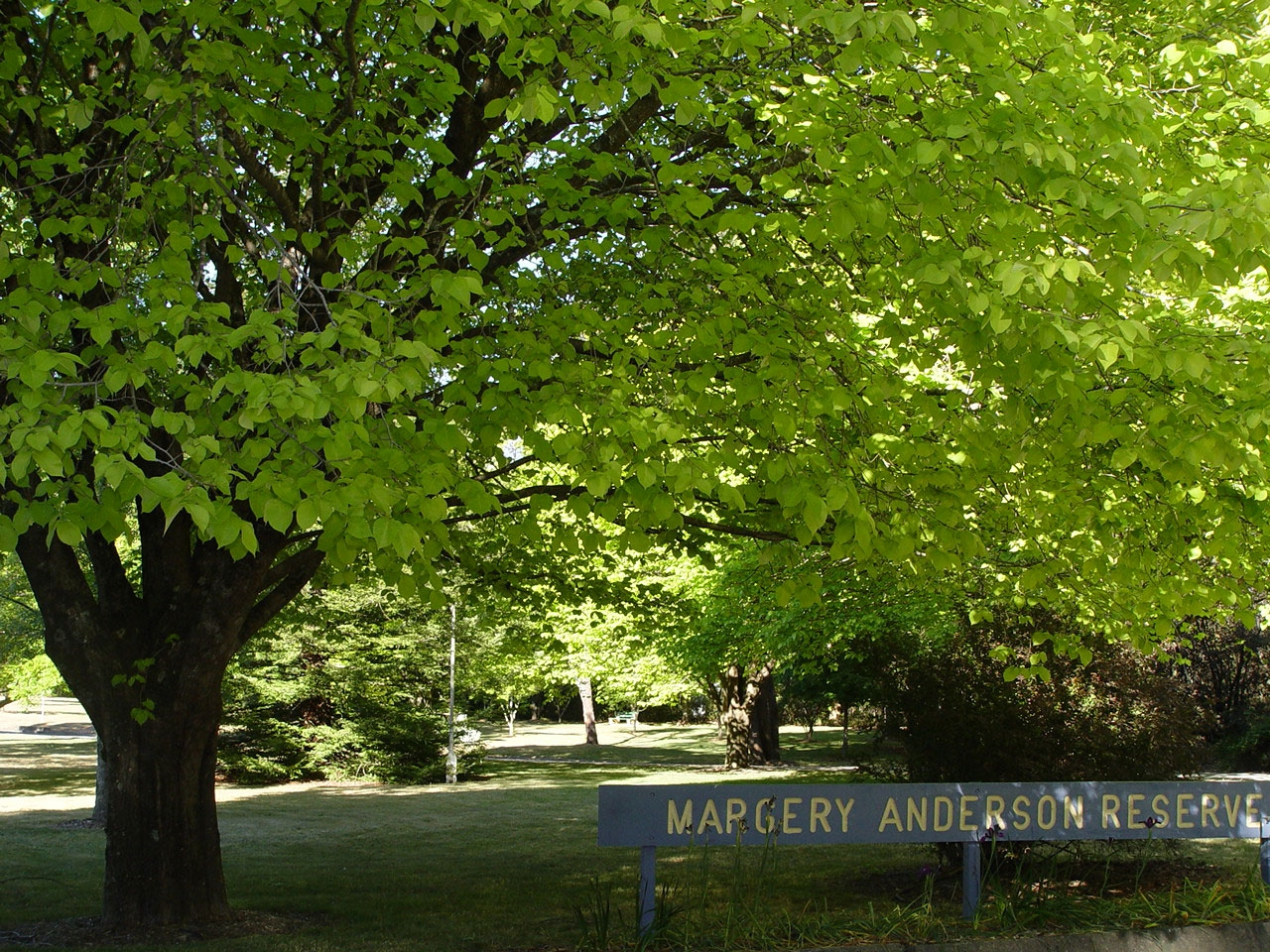 Margery Anderson Reserve