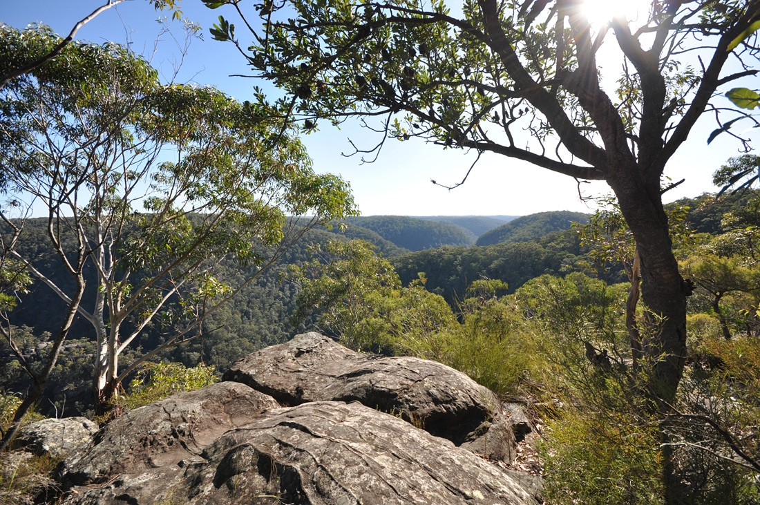 Martins Lookout Springwood