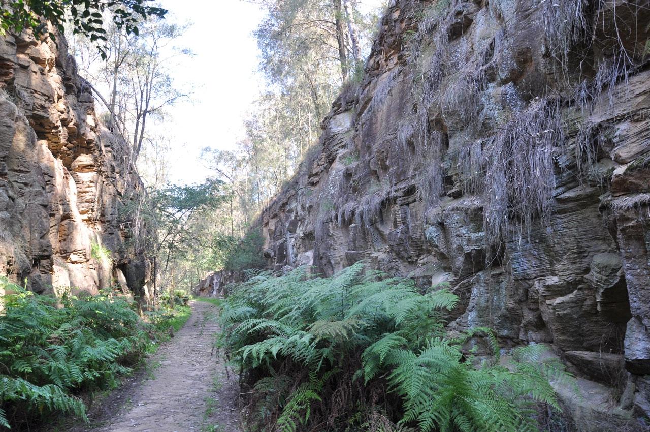 Lapstone Zig Zag Walking Track