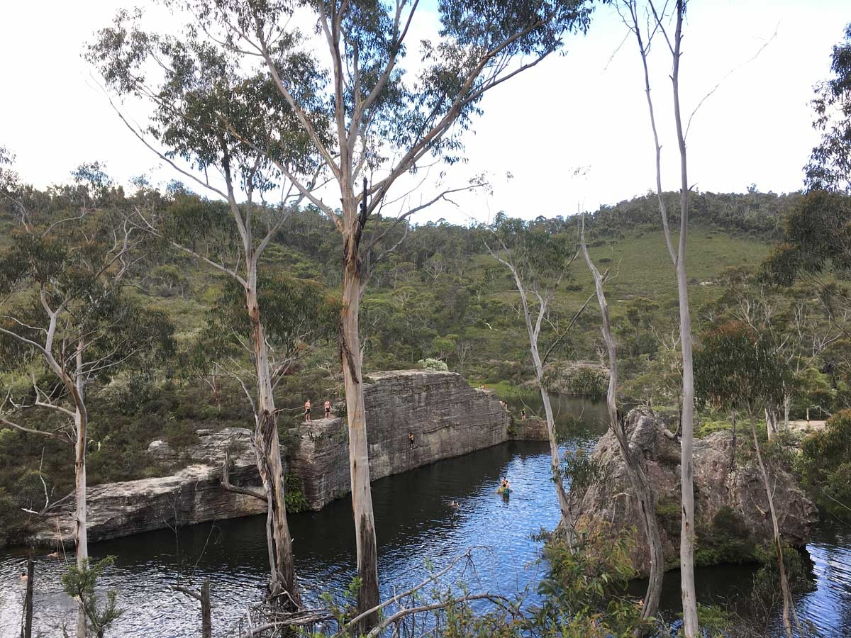 Dargan Creek Reserve