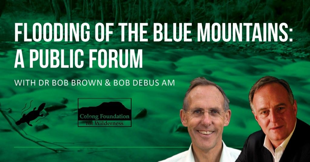 Bob Brown and Bob Debus to Launch Campaign to Save Blue Mountains Wild Rivers