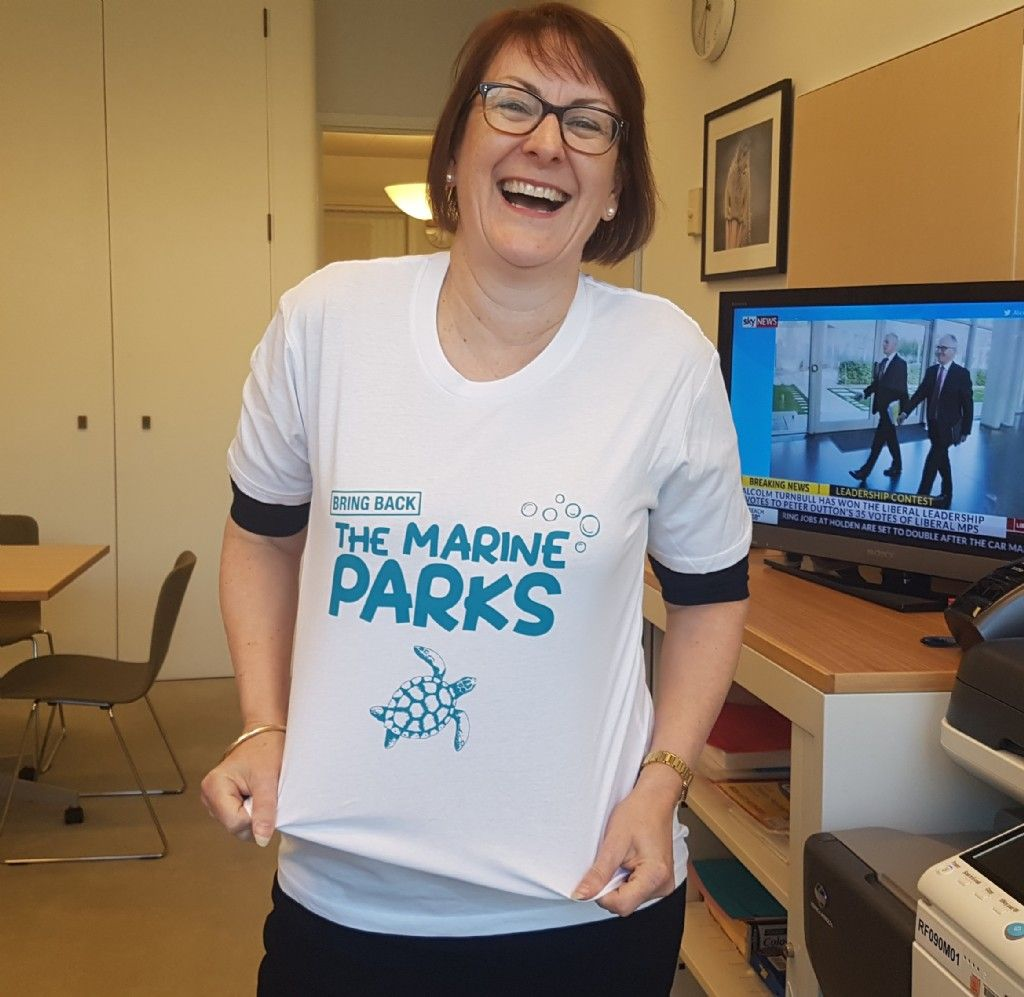 Calling on Mountains Musos and Residents to Save Our Marine Parks