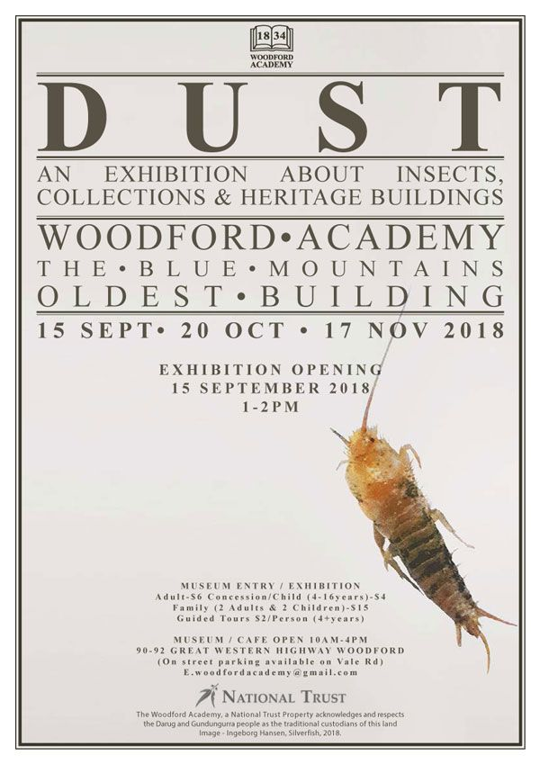 'Dust': An Exhibition About Insects, Collections and Heritage Buildings