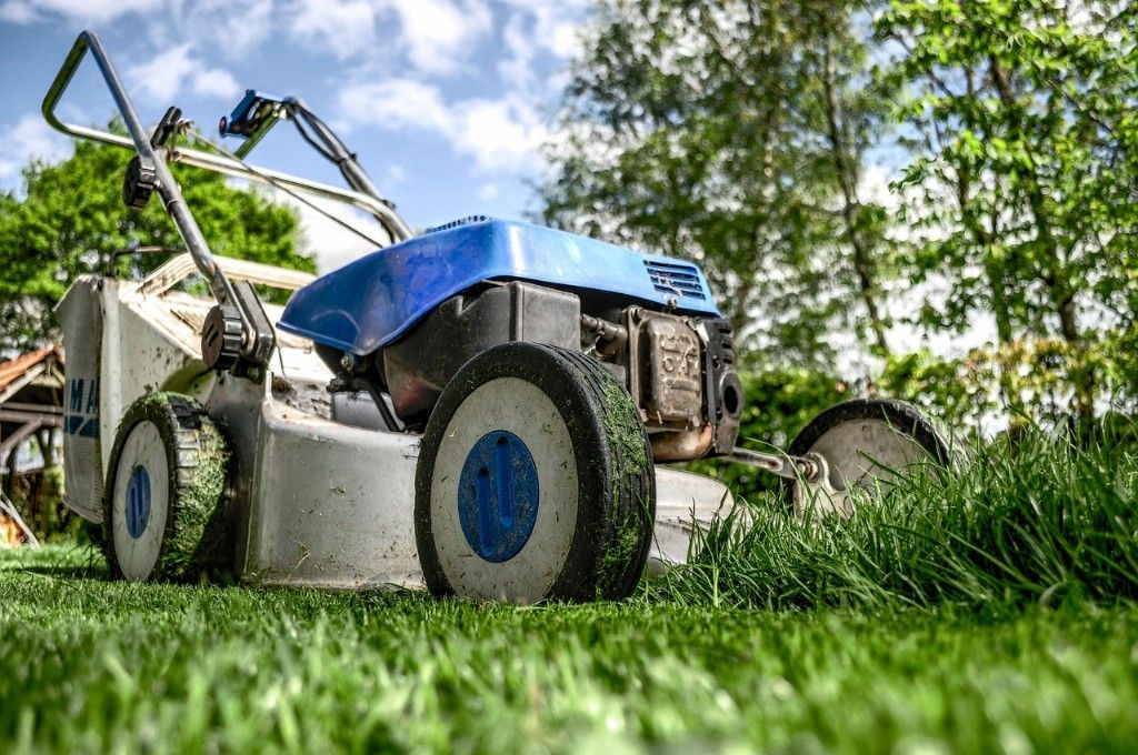 Grass Maintenance – Know Your Responsibilities
