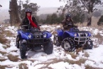 quad bikes in the snow