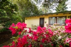 5 Bedroom Cottage
