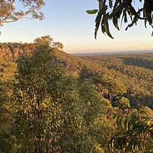 Chalmers Lookout Glenbrook