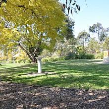 Ardill Park