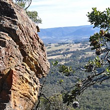 Views over Megalong Valley