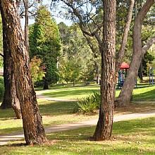 Noble Street Park Bullaburra