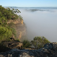 Misty Morning at Faulconbridge Point