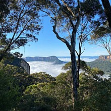 Jamison Valley from Narrowneck Road