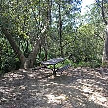 Horseshoe Falls Reserve Hazelbrook