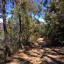 Single track to the lower lookout
