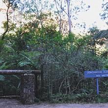 Coachwood Glen Nature Trail