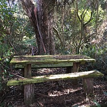 Mt Banks Summit Picnic Table