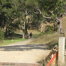 Horse riding in Megalong Valley