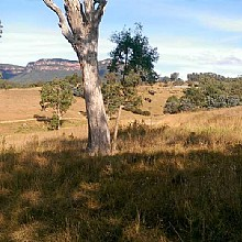 Six Foot Track Megalong Valley