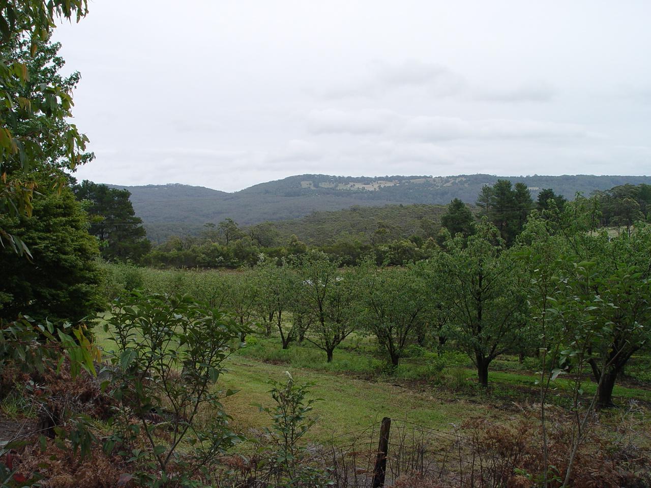 Bilpin Blue Mountains Australia