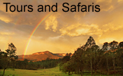 4WD tours, photo safaris, guided walks