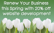 Save 20% off website development